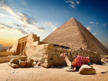 Fly til Kairo
