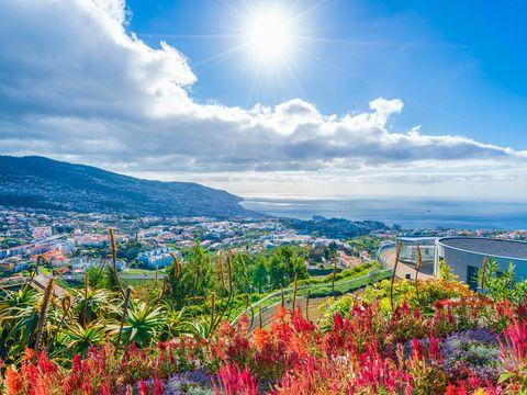 Pakkereiser til Madeira