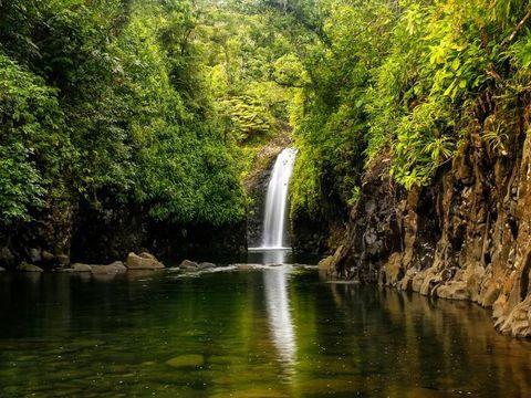 Flybilletter til Taveuni Island