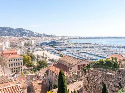 Pakkereiser til Cannes