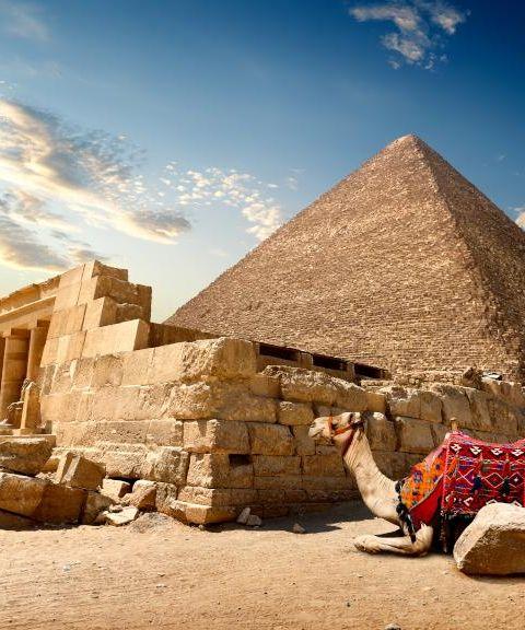 Fly til Egypt