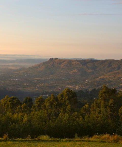 Fly til Swaziland