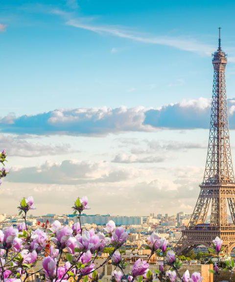 Pakkereiser til Frankrike