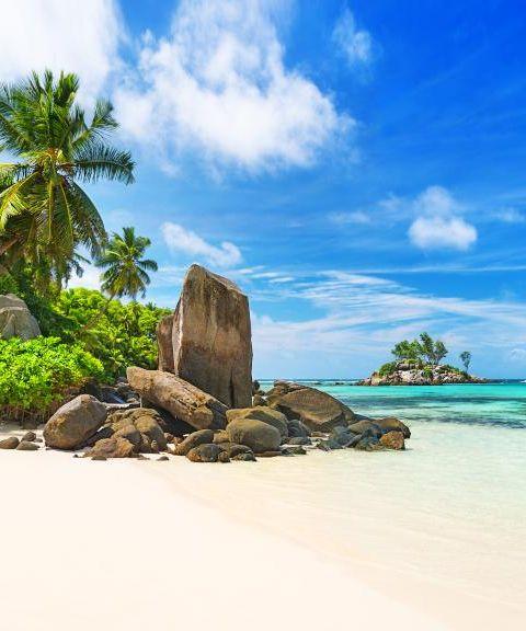 Fly til Seychellene