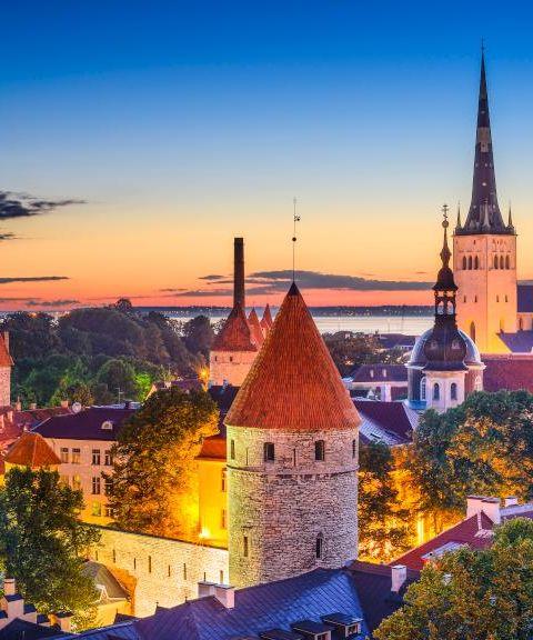 Fly til Estland